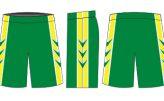 3 Pointer Shorts Design
